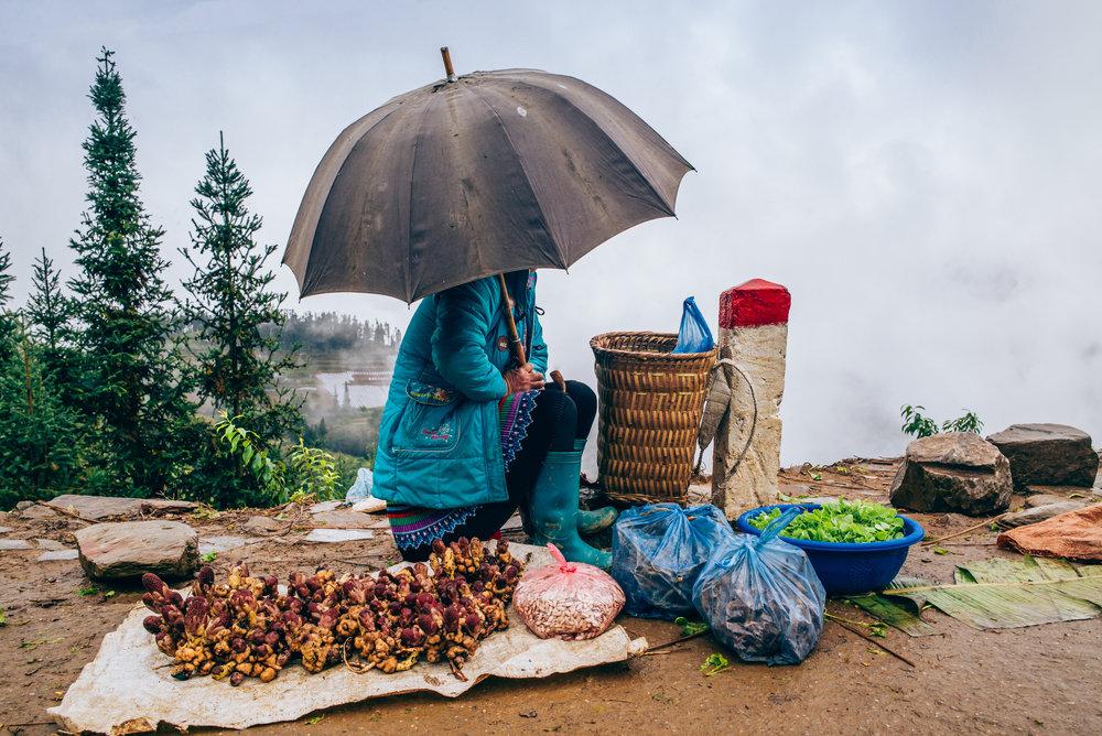 Vacanze in Vietnam e venditrice in strada sotto ombrello