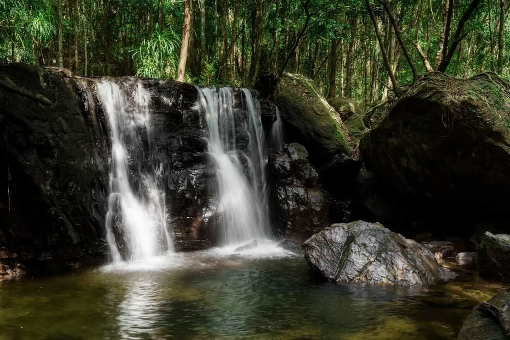 Natura selvaggia nel parco nazionale imperdibile nell'isola di Phu Quoc