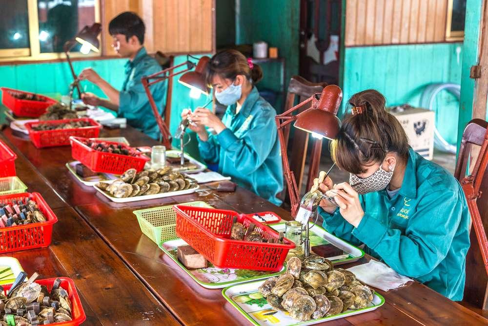Le famose perle del Vietnam
