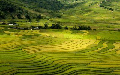Cosa vedere a Sapa, tra minoranze etniche e trekking nelle risaie